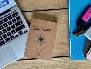 Dankbaarheidsdagboek, Friendly reflex
